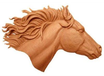 Голова лошади символ Ашивинов