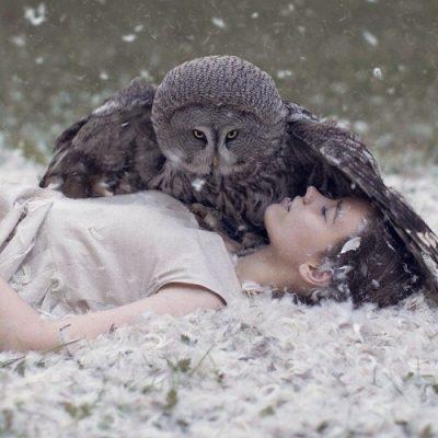 Сова птица Пунарвасу