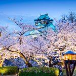 Знак Девы на примере Японии