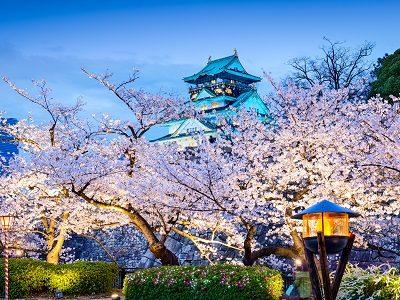 Япония под знаком Дева